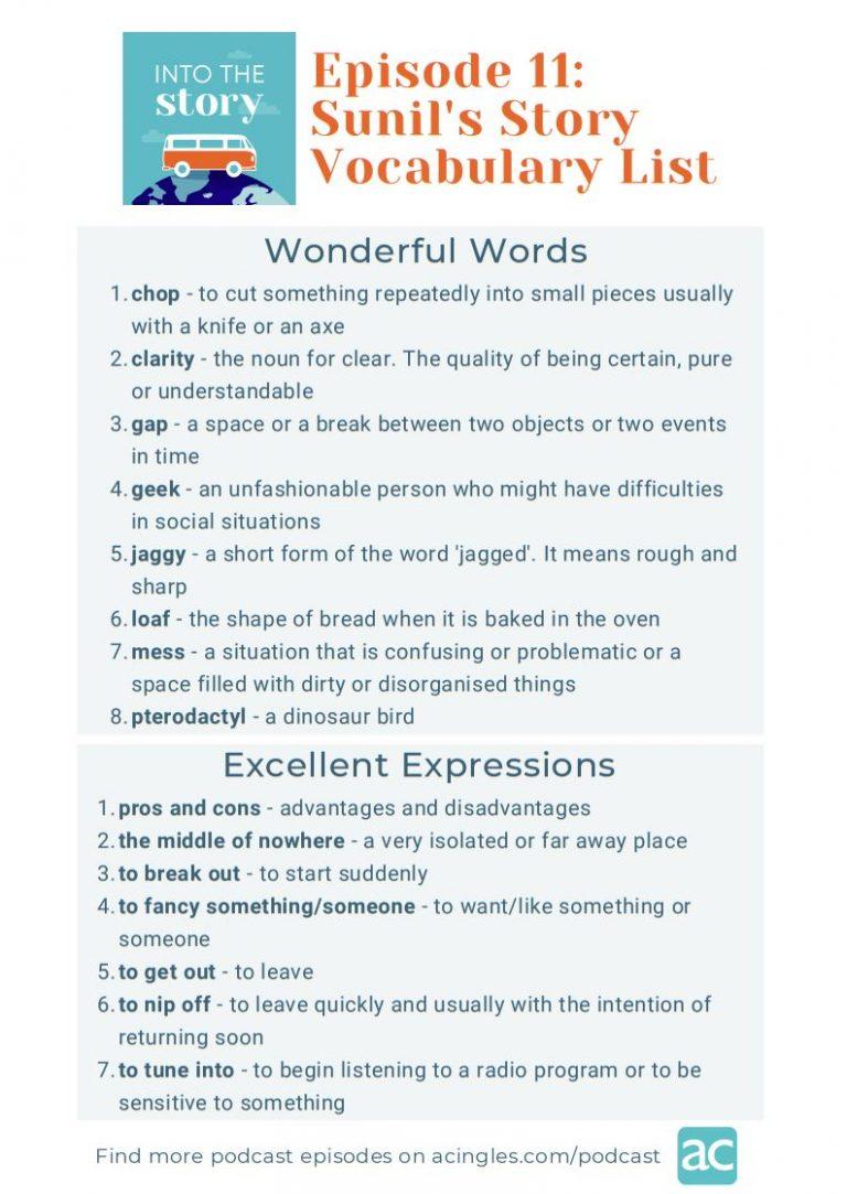 Captura vocabulary - sunil's story